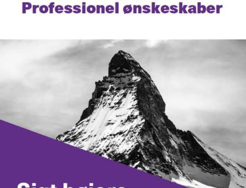 Få brochuren: Professionel ønskeskaber – sigt højere og udvid dine muligheder for succes